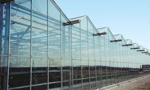 Evaporative Cooled Greenhouse